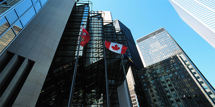 canadian office banner